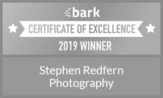 Bark - Award of Excellence